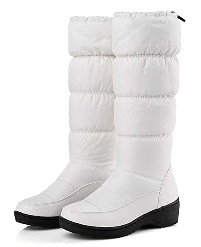 CHFSO Womens Trendy Solid Waterproof Fleeced Toggle Mid Calf Mid Heel Platform Warm Winter Snow Boots White mJKI2Cv