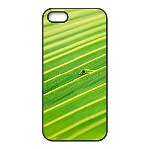 IPhone 5,5S Case Chameleon Hidden in the Leaves Hardshell for Girls, Case for Iphone 5s Cheap Nuktoe, {Black}