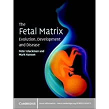 The Fetal Matrix: Evolution, Development and Disease