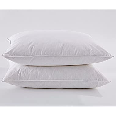 Puredown White Goose Feather and Down Pillow, Standard, Set of 2