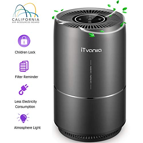 iTvanila Air Purifier, 3-in-1 Home Air Purifier with True HEPA Active Carbon Filter, Air Cleaner with Night Light, Efficiency Eliminates Smoke Odor Dust, Quiet in Bedroom Office, 2 Years Warranty (The Best Air Purifier For Cigarette Smoke)