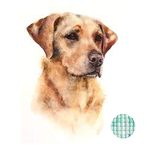 (LIPHISFUN Diamond Painting Kits for Adults Full Drill Square Resin Rhinestone Embroidery Unfinished Cross Stitch Home Decor Gift Labrador Retriever)