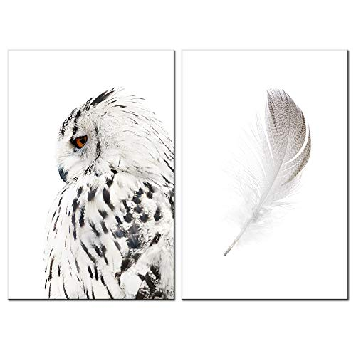 sechars - Contemporary Wall Art Canvas Grey Owl Pictures for Living Room Feather Paintings Modern Animal Prints Giclee Artwork Stretched Ready to Hang,Each Piece 16x24 inch (On Canvas Owl)