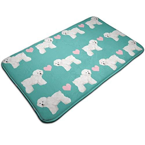 (Xixioou Green Bichon Frise Fabric Waterproof Indoor Outdoor Entrance Doormat Rug Floor Mats Shoe Scraper Doormat with Non Slip Backing,19.5x31.5 Inch)