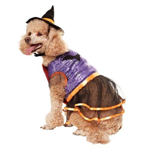 Martha Stewart Pets® - Witch - 2 Piece Dress Up Dog Costume (Medium)