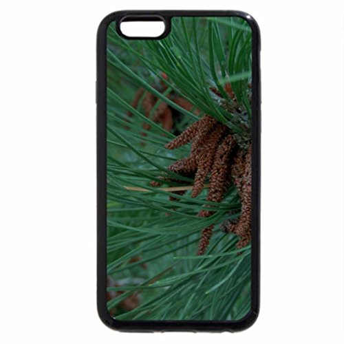 iPhone 6S / iPhone 6 Case (Black) Nestled Pinecone