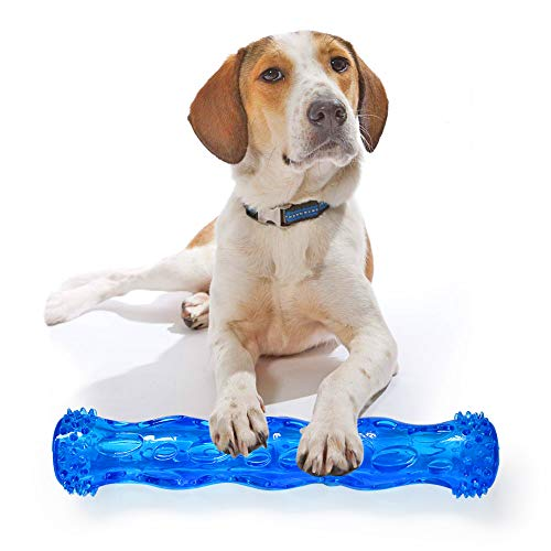 IREENUO TPR Squeak Chew Toy for Aggressive Chewers Durable Rubber Tooth Cleaning Toy for Dogs Bite Resistant Floating & Suitable for Pool Use Dog chew Toy Indestructible for Puppy (M, Blue)