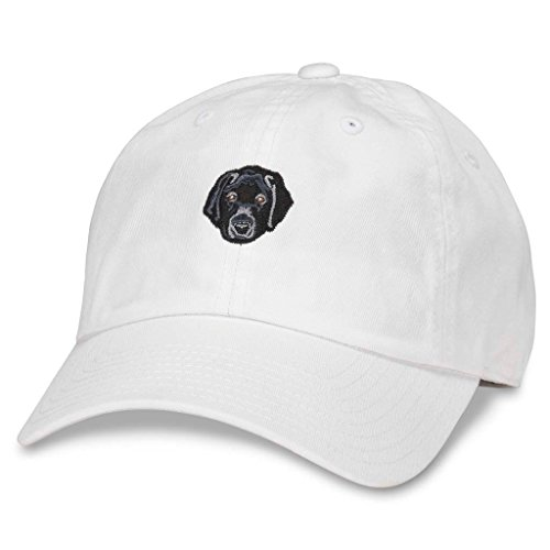 American Needle Micro Slouch Casual Baseball Dad Hat Black Labrador Retriever, Snow White ()