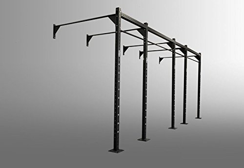 Freedomstrength® Crossfit funktionelle Wand montiert Rigs