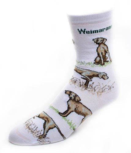 Weimaraner Dog Adult Poses Socks v.2,White,Medium