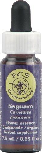 Flower Essence FES Quintessentials Saguaro Supplement Dropper -- 0.25 fl oz by Flower Essence ()