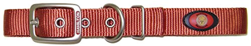 Hamilton Double Thick Nylon Deluxe Dog Collar with Brushed Hardware Finish, 1-Inch by 26-Inch, Red Brick