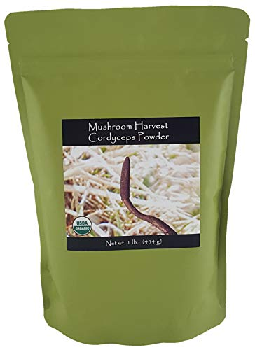 Cordyceps Militaris FULL SPECTRUM Mushroom Powder CERTIFIED ORGANIC 1lb.     ()