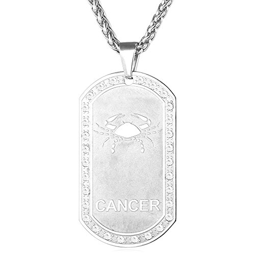 Tag Dog Zodiac (Men Dog Tags Pendant with Cubic Zirconia Stainless Steel Birthday Women Zodiac Necklace (Cancer))