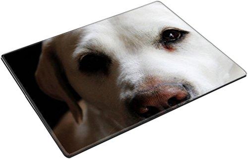 MSD Place Mat Non-Slip Natural Rubber Desk Pads design 21412970 labrador retriever by MSD