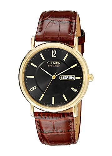Citizen-Mens-BM8242-08E-Eco-Drive-Gold-Tone-Stainless-Steel-Watch-with-Brown-Leather-Band