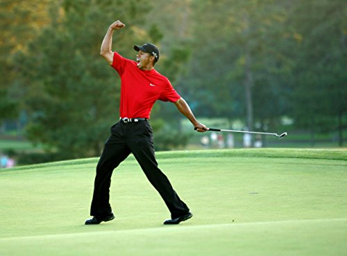 Tiger Woods Fist Pump 8x10 Photo (Tiger Photo Woods)
