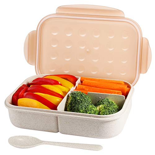 Leakproof Containers Reusable 3 Compartment Container