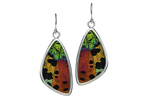 Real Butterfly Wing Earrings in Sterling Silver - Style #1 by Astro Gallery Of Gems