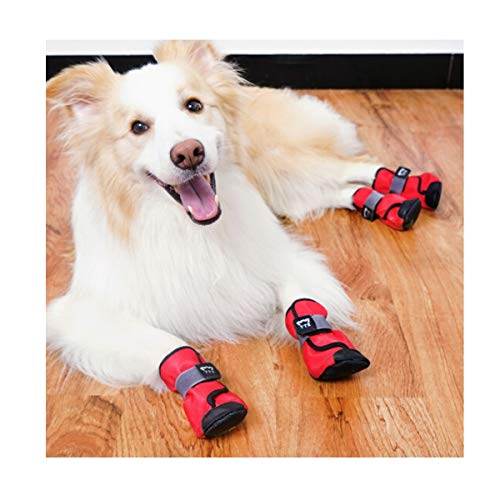 db234b7eea8f8 Amazon.com : Haoweidaoshanghang Dog Shoes, Large Dogs, Golden ...