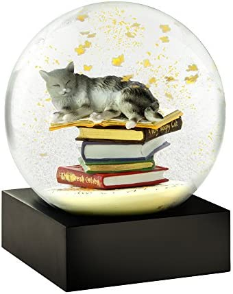 CoolSnowGlobes Cat on Books Cool Snow Globe