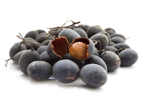 Benefits of Black vevet tamarind seed for plant (As Tamarind Fruit compare prices)