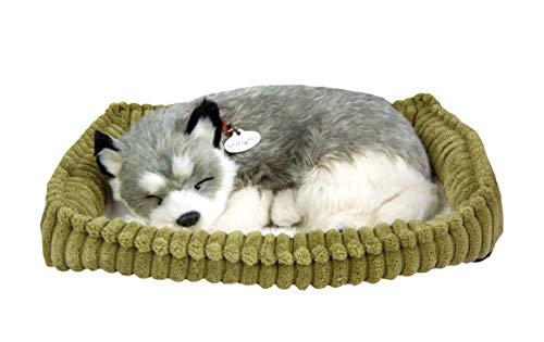 (Realistic Breathing Alaskan Husky - Perfect Petzzz Life Like Husky Dog)