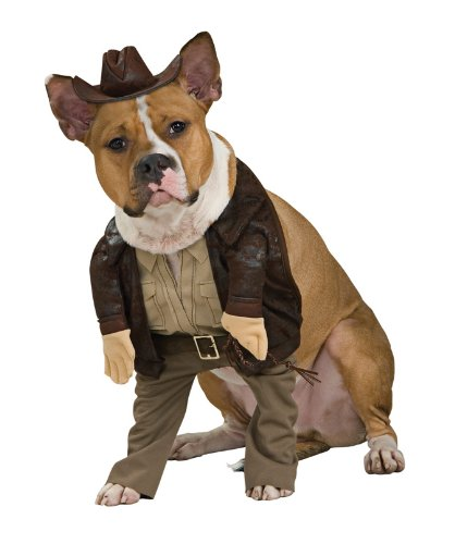 (Indiana Jones Pet Costume,)