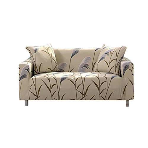 double seats sofa stretch couch