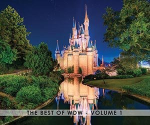 The Best of WDW - Volume 1 (Best Disney World Park)