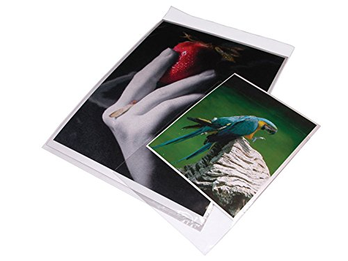 Print File Crystal Clear Art Protectors 19x25'' Package of 100, Resealable Adhesive Strip (BOPP1925) by Print File