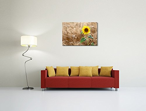 Sunflower on Wheat Field in Summer Sunny Day Wall Decor