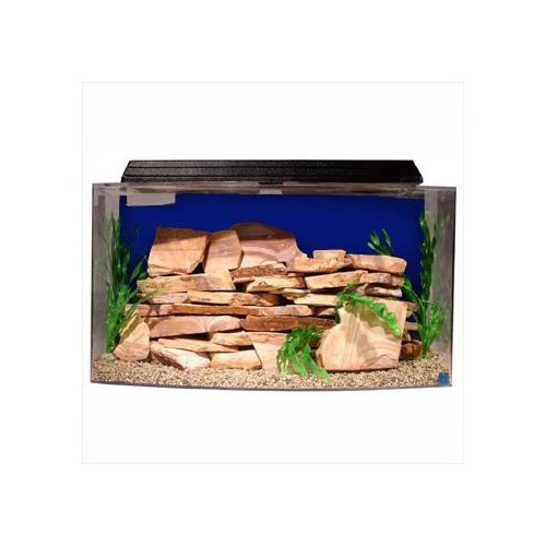 best home aquarium