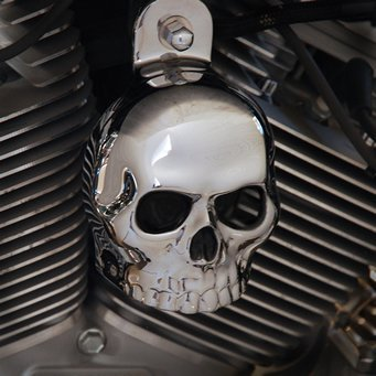 Harley Chrome Plated Skull Horn Cover Chrome Dome