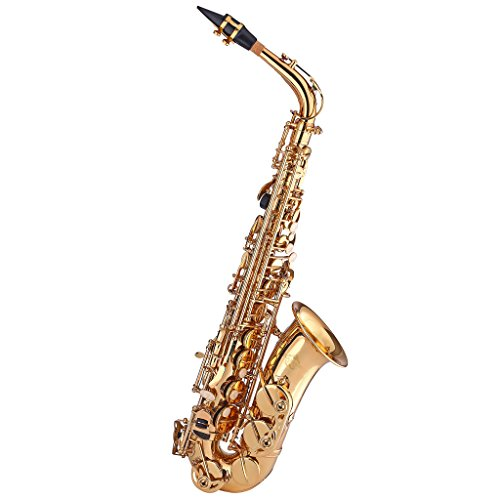 Kaizer Alto Saxophone E Flat Eb Gold Lacquer Includes Case Mouthpiece and Accessories ASAX-1000LQ - Flat Alto Saxophone