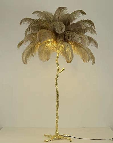XIHOME Modern Luxury Real Ostrich Feather Gold Floor Lamp Resin Nordic Standing Lamp Villa Repot Hotel Decor Lighting Romantic Princess Bedroom Bedside Floor Lamp Brown 160cm