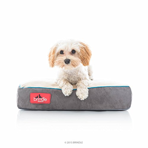 Brindle Soft Shredded Memory Foam Dog Bed with Removable Washable Cover - 17in x 11in - Khaki