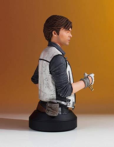 Darth Vader Actor Costumes - Gentle Giant Star Wars: Solo: Han