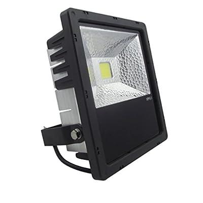 Zesol IP65 Waterproof 50W 4300K LED Flood light Outdoor Lights Black case Commerical Outdoor