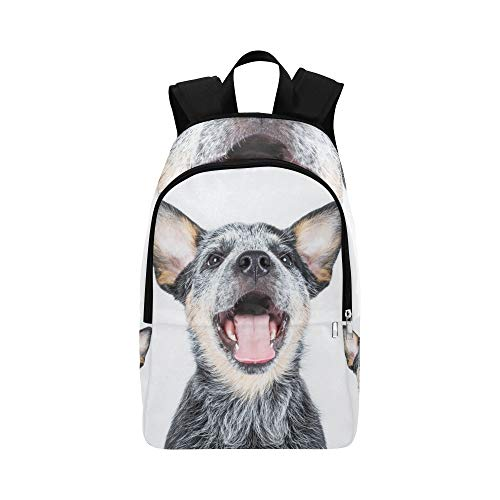 Australian Cattle Dog ACD Puppy Dog Stock Photo Casual Daypack Travel Bag College School Backpack for Mens and -