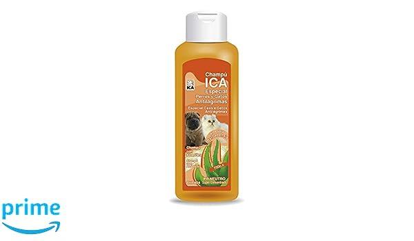 ICA CHPM24 Champú Anti Lágrimas con Aloe Vera para Perros y Gatos: Amazon.es: Productos para mascotas