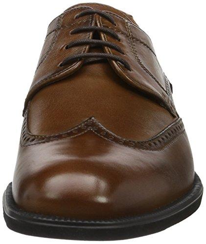Lloyd Pitt, Zapatos de Cordones Derby para Hombre Marrón (Noce)