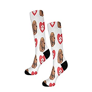 Funny Mens Socks Sussex Spaniel Dog Heart Paws Polyester Crazy Socks Womens 27