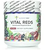 Gundry MD Vital Reds - Concentrated Polyphenol Blend - 34 polyphenol-rich superfruits and probiotics