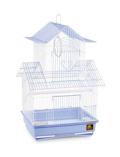 (Prevue Hendryx SP1720-2 Shanghai Parakeet Cage, Blue and White )