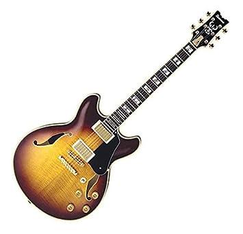 Ibanez jsm100 John Scofield firma Semihollow guitarra eléctrica vintagesunburst: Amazon.es: Instrumentos musicales