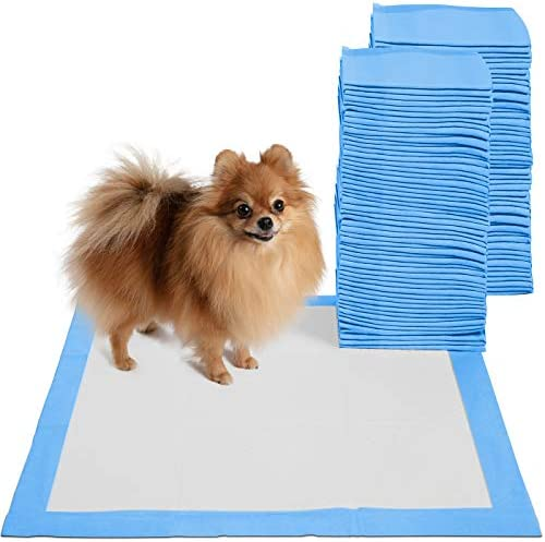 Training Potty Pads Dogs count