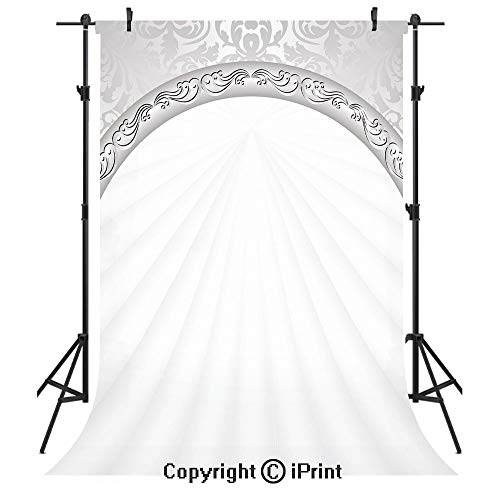 Silver Photography Backdrops,Curvy Band with Abstract Baroque Ornaments Victorian Vintage Corner Framework,Birthday Party Seamless Photo Studio Booth Background Banner 6x9ft,Light Grey White