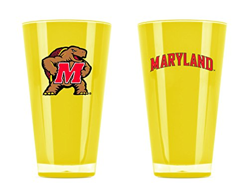 Maryland Terrapins Art Glass - 3
