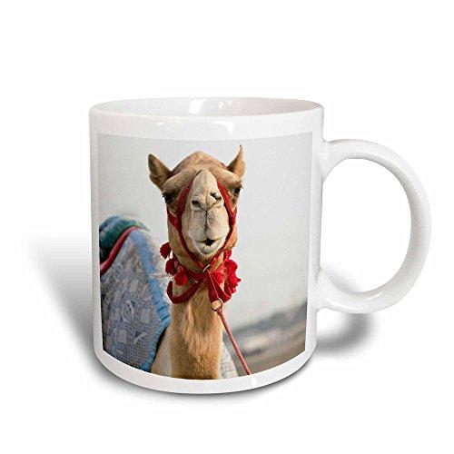 3dRose mug_70914_3